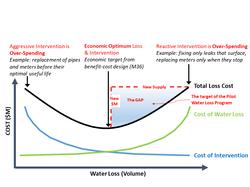 Economic Optimum Level of Interventi