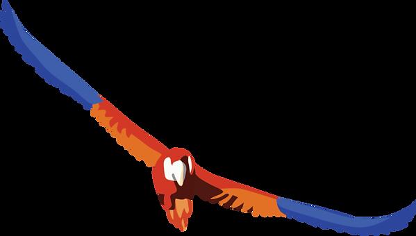 perroquet2.png