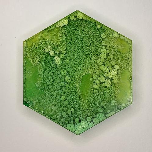 """Pre-Made 1.5"""" Hexagon"""