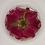 """Thumbnail: Pre-Made 1.5"""" Circle - Floral"""