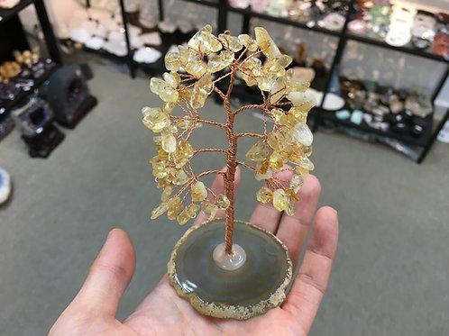 Citrine Tree  黃晶樹 ( 1 ) ( 已售 / Sold )