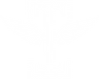 Icarus FC Logo White.png