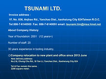 TSUNAMI LTD presentation