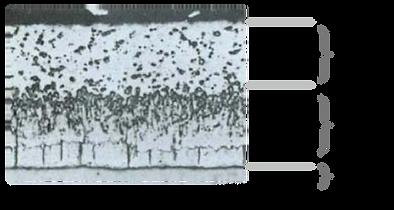 熱浸鍍鋅皮膜斷面顯微鏡組織