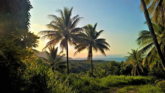 Wanderlust Caribbean Adventures - Photography