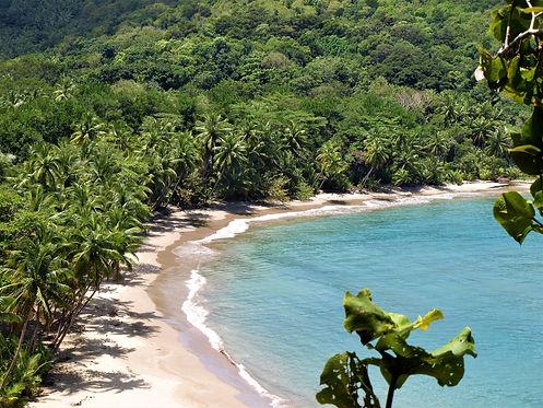 Wanderlust Caribbean Adventures - Beaches
