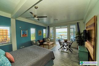 WC - Studio Suite - Panoramic View.jpg