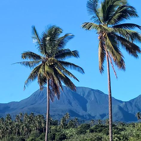 Ridge View by Property.jpg