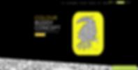 Website Design Example | Colour Buddy