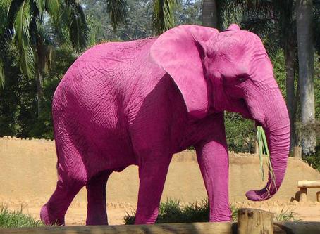 Denk Eens Niet Aan een Roze Olifant