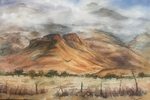 Chiricahua Snow Clouds by Carol Chandler