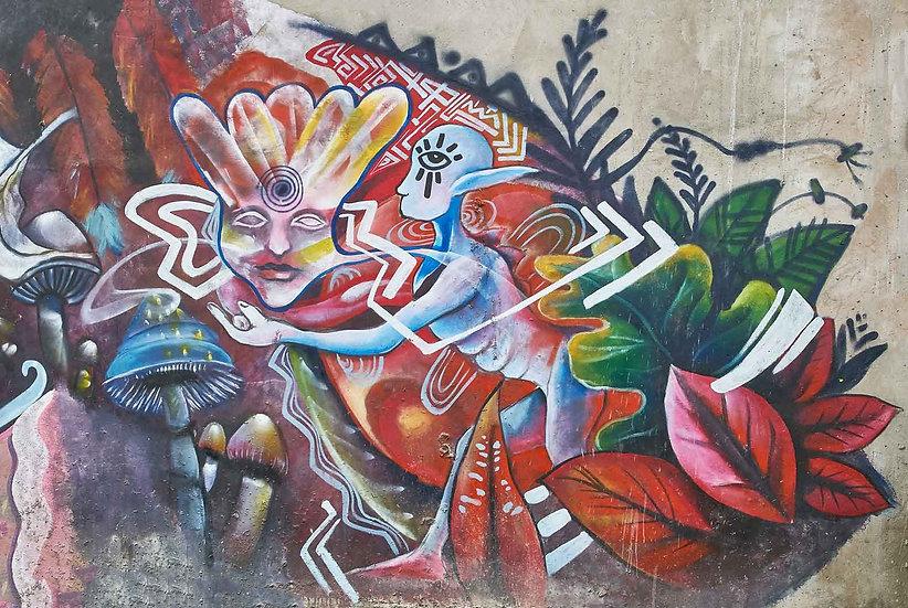 Mushrooms - Artist: Sose
