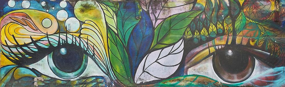 Eyes of Nature - David Yecle