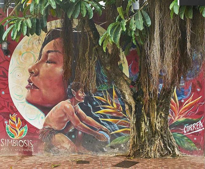 Simbiosis - Artista: Miguel Corea