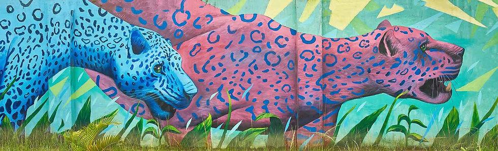 Jaguars - Artist: Felixantos