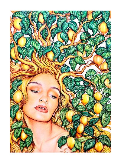 """""""Citrus"""" (The Tree of Plenty)"""