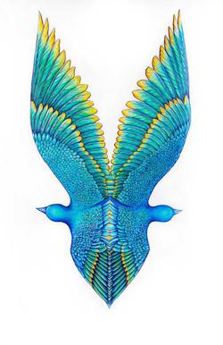 Les Oiseaux bleu en miroir