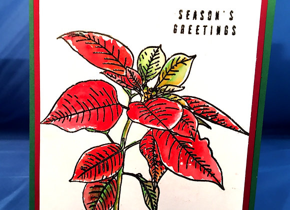 "Poinsettia on White Red Mat over Green 5"" x7"", General  Greeting"