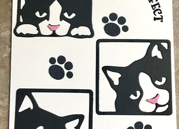 "Cute Black & White Kitties Thank You 5"" x 7"""