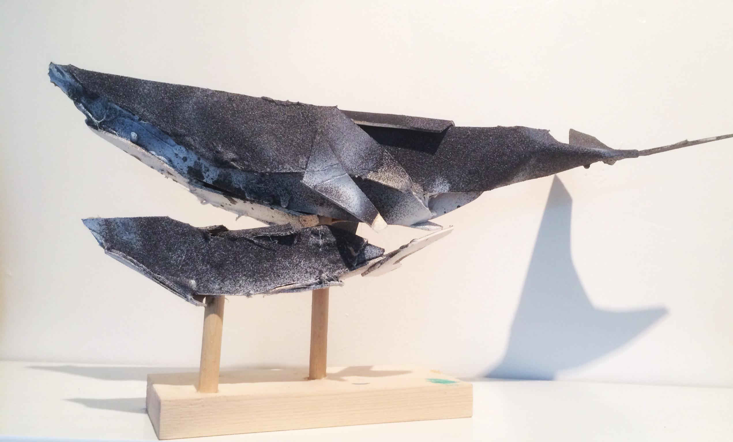 whale & calf
