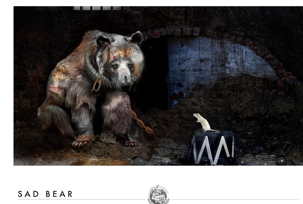 sad bear 2.jpg