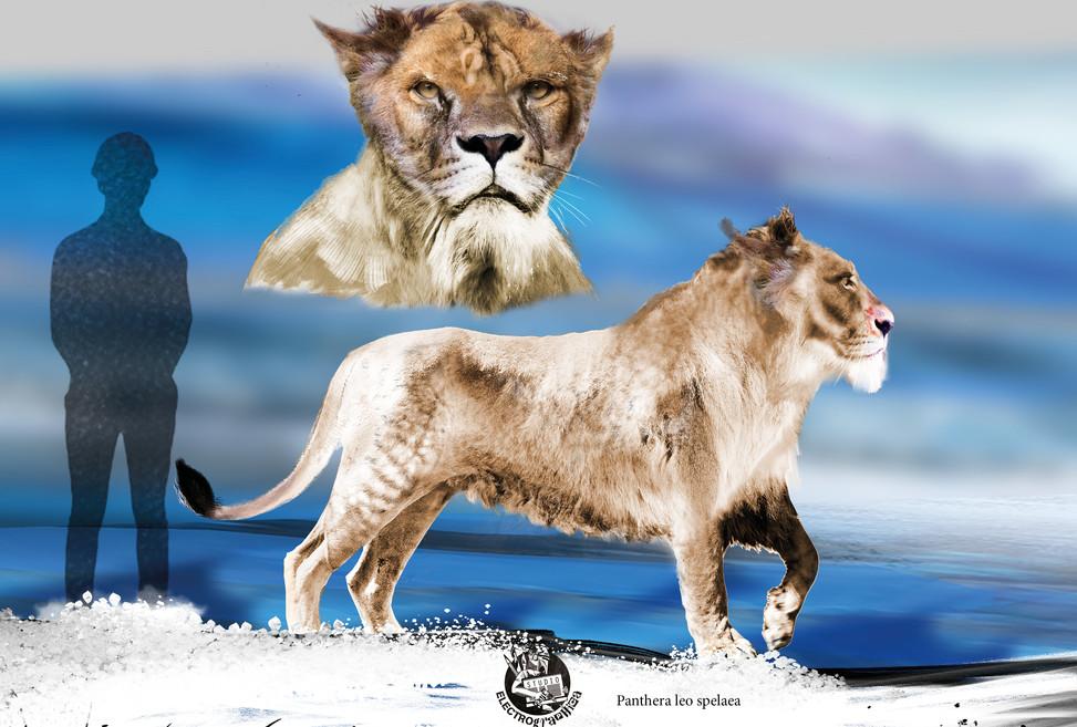 Pre History Lion