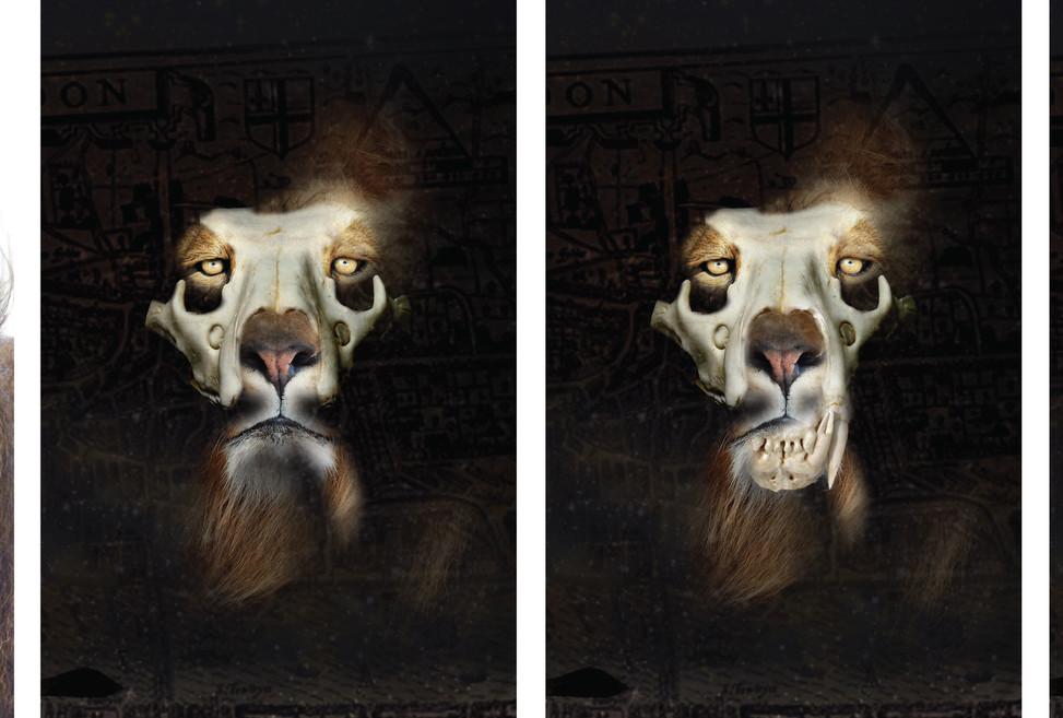 Skull Lion Concept Art