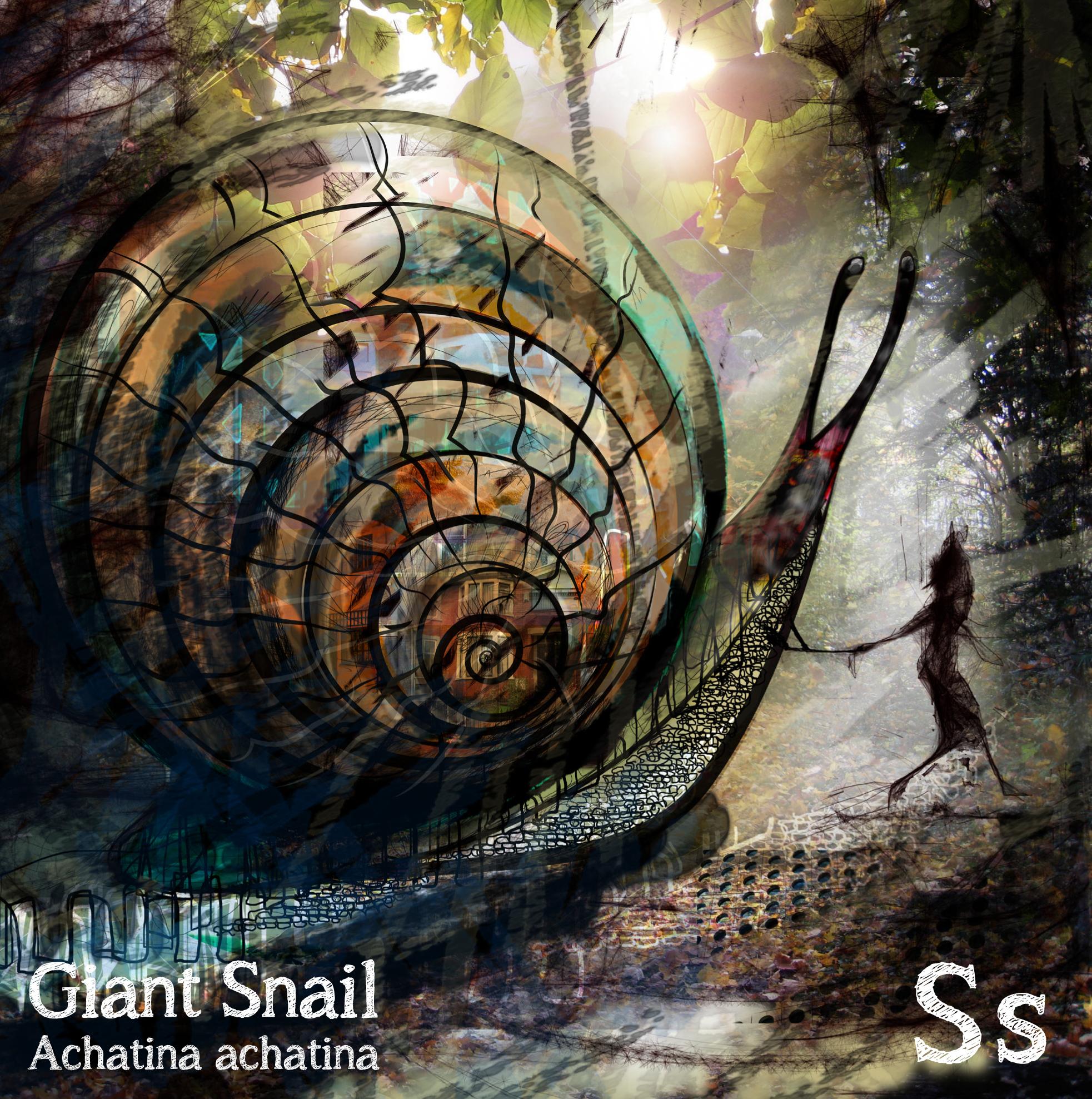 snail master.jpg