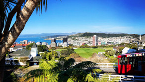 "Wellington - ""Coolest little Capital in the World"""