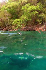 jornadasub_ilha_grande_naui_scuba_diver_