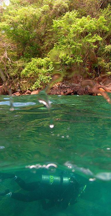Mergulho Ilha Grande