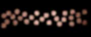 Rose Gold Dots Assorted Line no border.p