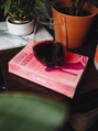 Reads & Reds Book Club - Bet Me & Primitivo