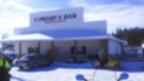 AN UP NORTH BAR AND GRILL WITH REAL ESTATE $350,000.00
