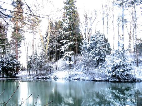 Wanderung zum Schloss Castell und seinem magischen Weiher | Winter am Bodensee