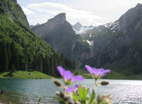 Seealpsee - Naturschönheit in den Appenzeller Alpen