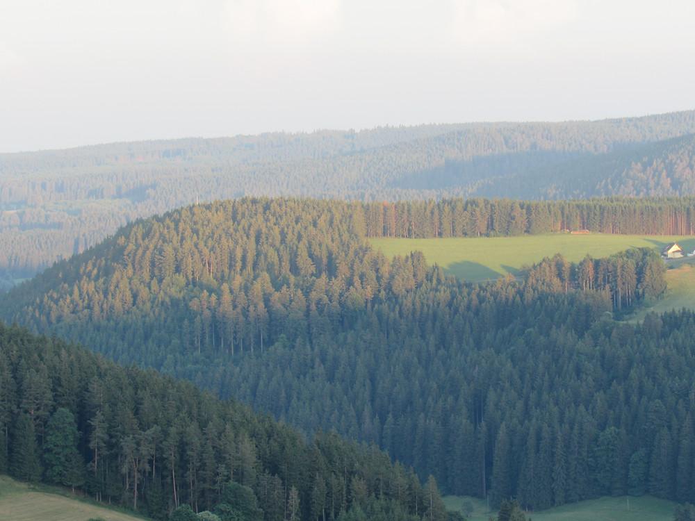Schwarzwald nähe Titisee