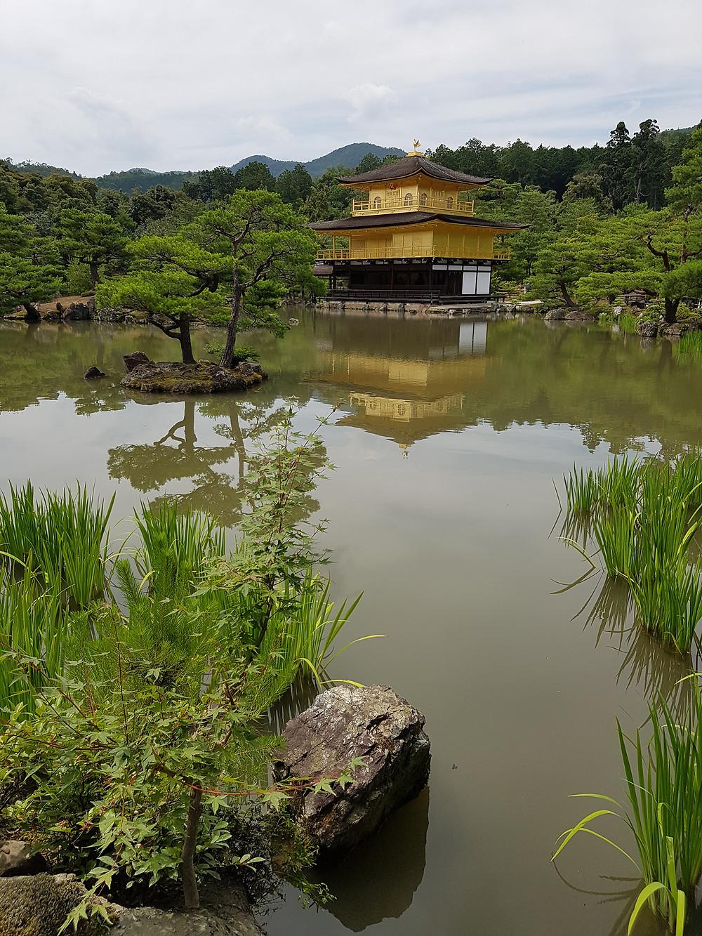 Kinkakuji Tempel mit Spiegelung im Teich