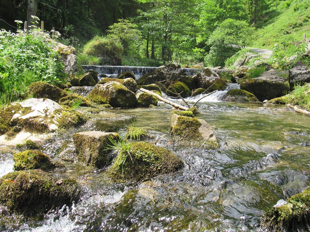 Fluss Schwendibach