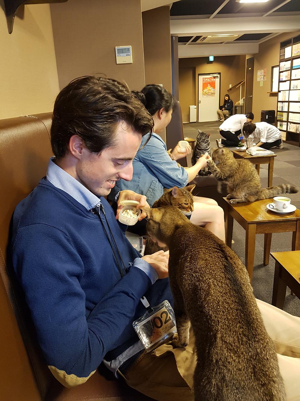 Ich am Füttern der Katzen im Cat Cafe Calico