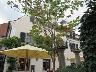 Restaurant Hirsch in Horn