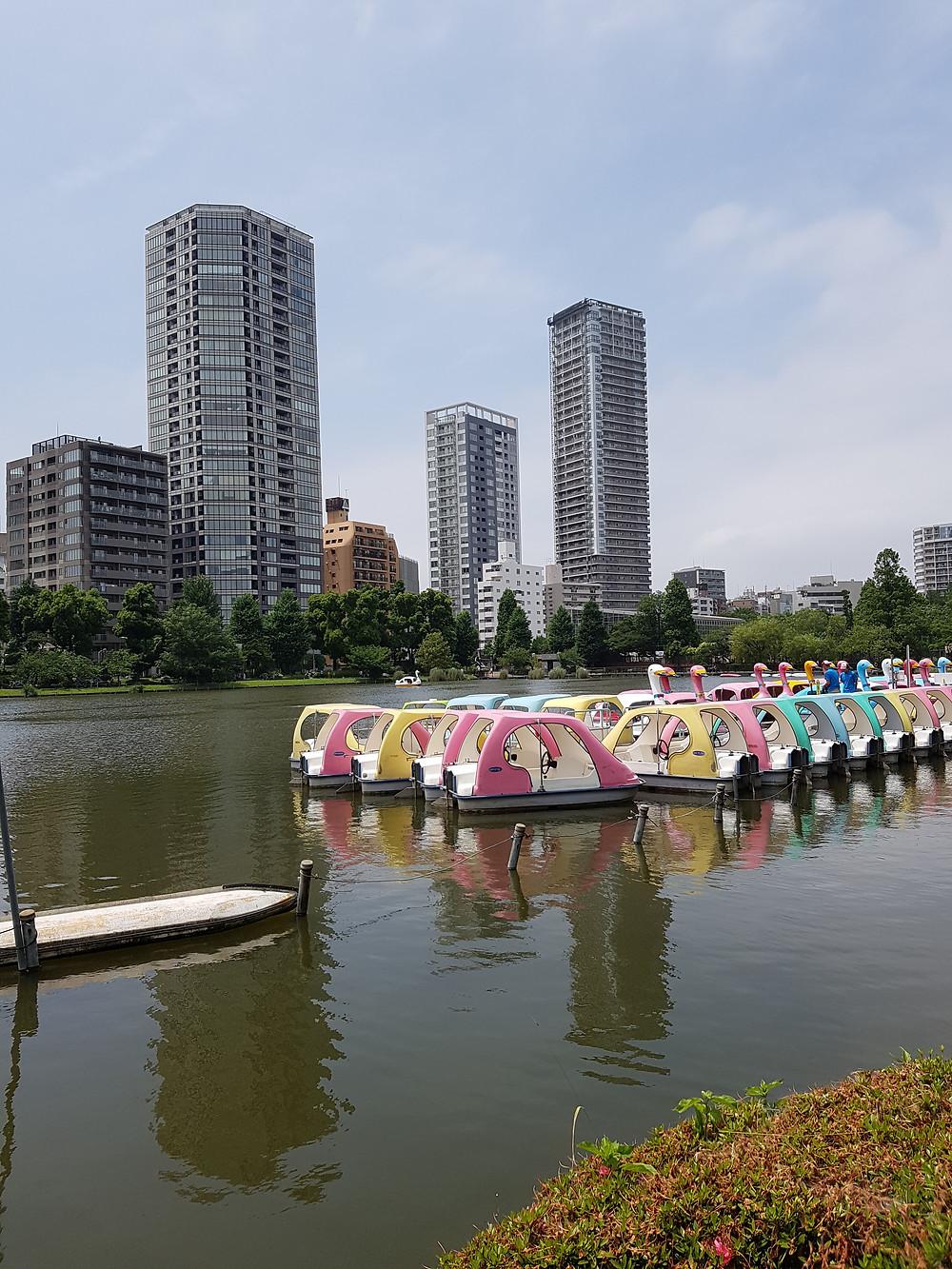 Shinobazu-Teich