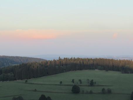 Wochenendtrip - Donauquelle und Freiburg im Breisgau