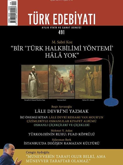 Türk Edebiyatı 491. Sayı