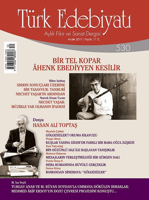 Türk Edebiyatı 530. Sayı
