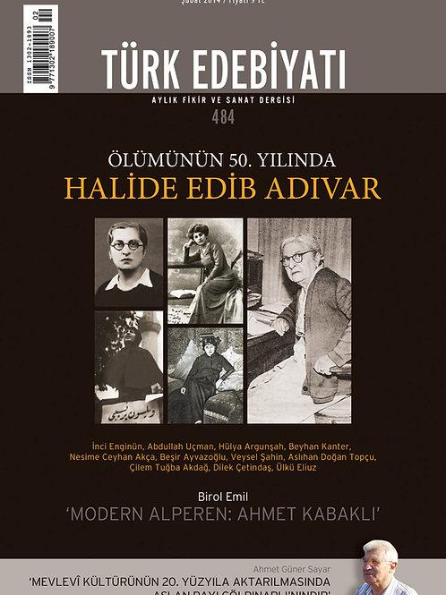 Türk Edebiyatı 484. Sayı