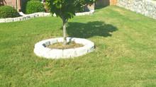 Faithful Lawn Care