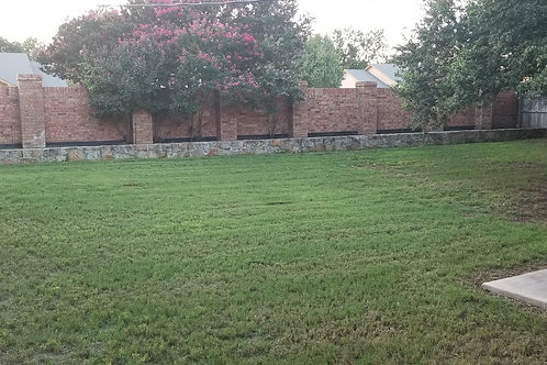 Lawn service. Mow, edge, blow