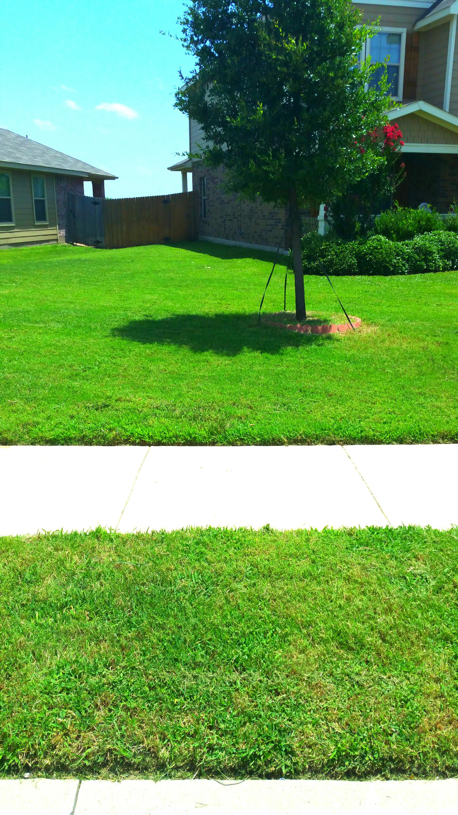 Lawn servicers