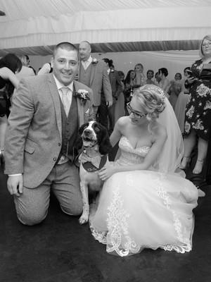George enjoying the wedding